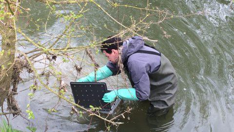 « La pollution du bassin Artois-Picardie risque d'empirer »