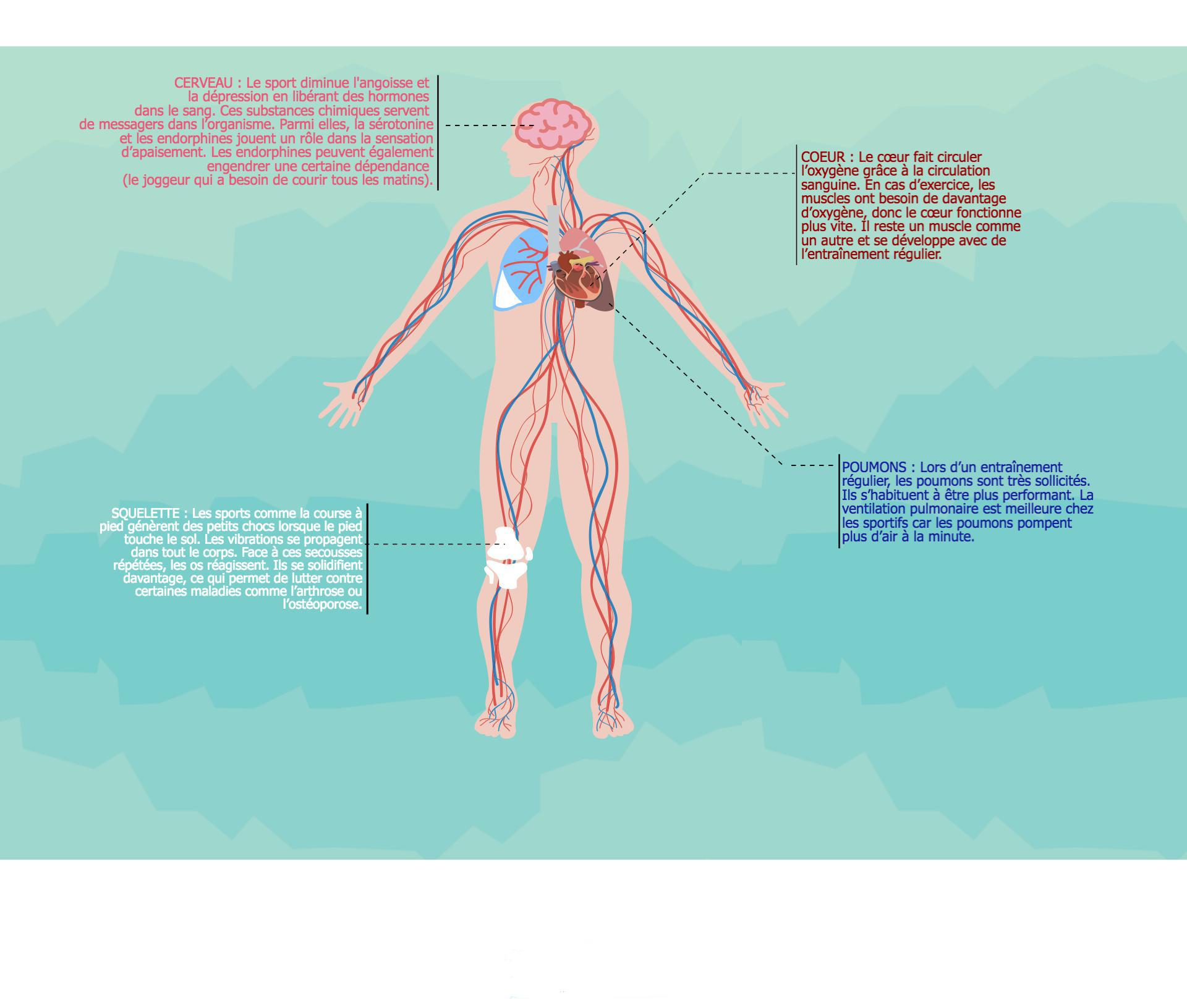 sport-et-bien-etre infographie
