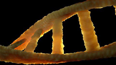 Rosalind Franklin et la structure de l'ADN