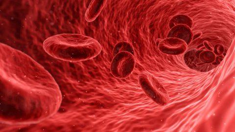 Gertrude Elion & la leucémie